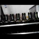 pilnībā automātiska olīveļļas lineārā 6 sprauslu eļļas pudeles pildviela